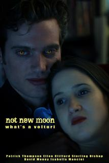 Not New Moon. What's a Volturi?