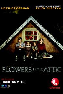 Květiny v podkroví