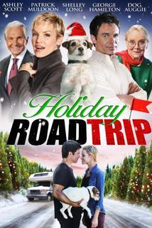 Vánoční výlet  - Holiday Road Trip
