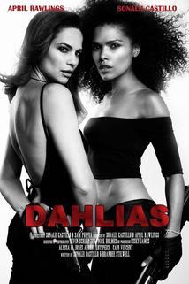 Dahlias: Wild Card