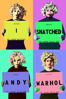 I Snatched Andy Warhol