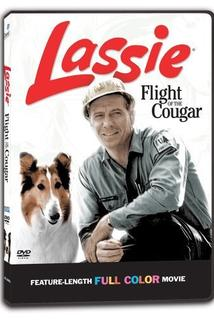 Lassie a puma na útěku  - Lassie: Flight of the Cougar