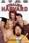 Zloději z Harvardu