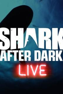 Shark After Dark