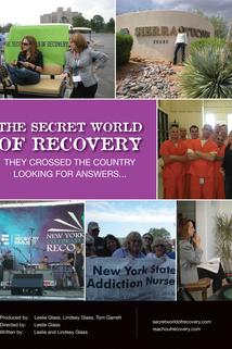 The Secret World of Recovery