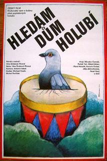 Hledám dům holubí