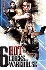 Six Hot Chicks in a Warehouse (2014)