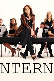 Interns: The Web Series
