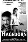 Hagedorn (1996)