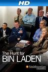 The Hunt for Bin Laden (2012)