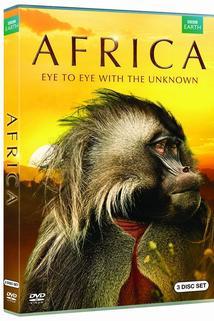 Africa  - Africa