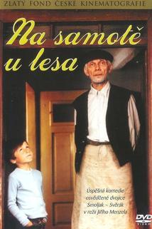Plakát k filmu: Na samotě u lesa