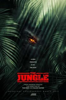The Jungle  - The Jungle