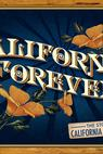 California Forever