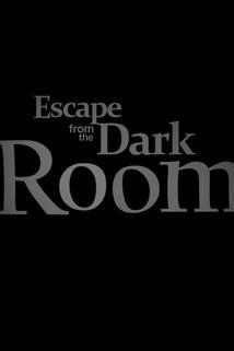 The Dark Room  - The Dark Room