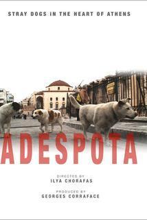 Adespota, chiens sans maîtres au coeur d'Athènes