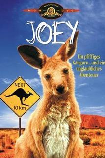Joey  - Joey