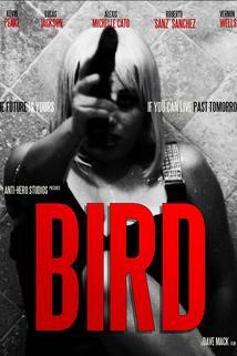 Bird ()