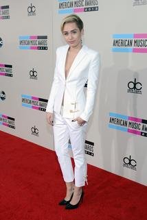 American Music Awards 2013  - American Music Awards 2013