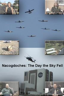 Nacogdoches: The Day the Sky Fell