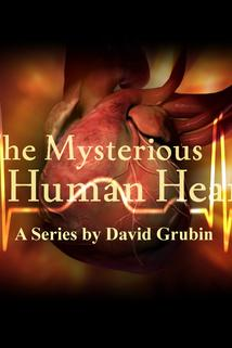 The Mysterious Human Heart