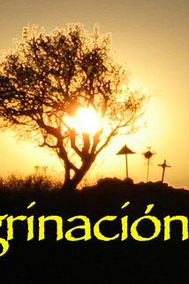 Peregrinación