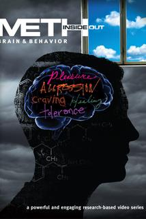 Meth Inside Out: Brain & Behavior