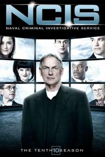 NCIS: Season 10 - You Wear It Well