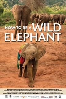 How to Be a Wild Elephant