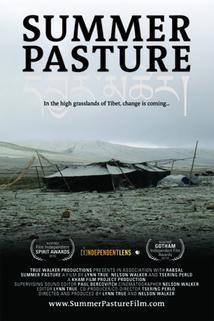 Plakát k filmu: Letní pastviny