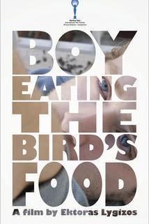 Plakát k filmu: Chlapec pojídající ptačí zob