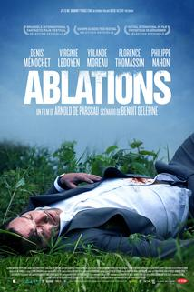 Ablations  - Ablations