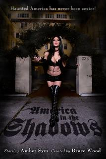 America in the Shadows