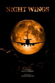 Night Wings ()