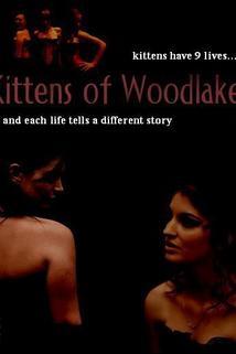 Kittens of Woodlake