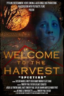 Welcome to the Harvest