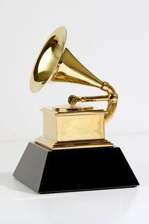 Live from the Red Carpet: The 2014 Grammy Awards