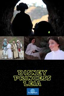 Disney Princess Leia: Part of Han's World