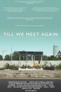 Till We Meet Again ()