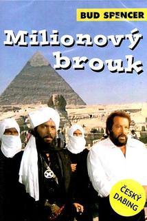Milionový brouk  - Piedone d'Egitto