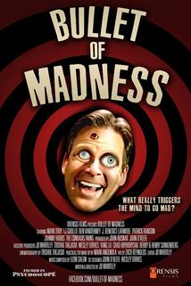 Bullet of Madness