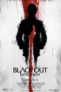 The Blackout Experiment  - The Blackout Experiment