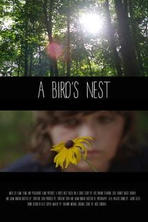 A Bird's Nest  - A Bird's Nest