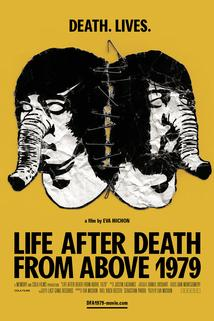 Death from Above 1979: A Fly in Amber