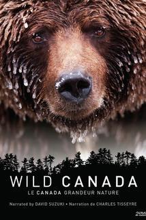 Wild Canada  - Wild Canada