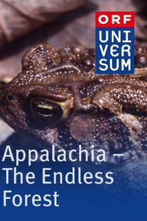 Appalachia: The Endless Forest