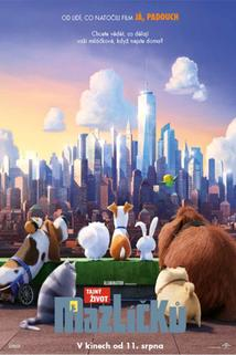 Tajný život mazlíčků  - The Secret Life of Pets