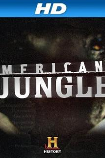 American Jungle  - American Jungle