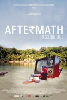 Aftermath, the Second Flood