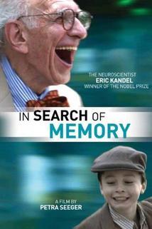 Auf der Suche nach dem Gedächtnis